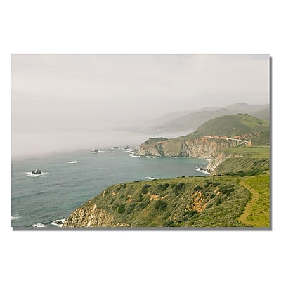Trademark Fine Art Ariane Moshayedi 'Big Sur Coast IV' Canvas Art 35x47 Inches