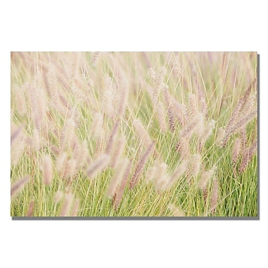 Trademark Fine Art Ariane Moshayedi 'Wild Breeze' Canvas Art 22x32 Inches