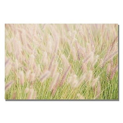 Trademark Fine Art Ariane Moshayedi 'Wild Breeze' Canvas Art 16x24 Inches