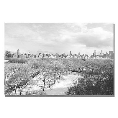 Trademark Fine Art Ariane Moshayedi 'Snowy Park' canvas art 22x32 Inches