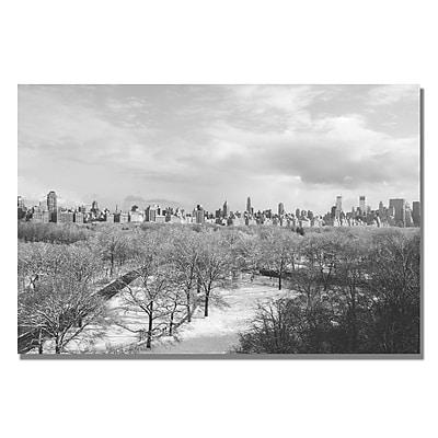 Trademark Fine Art Ariane Moshayedi 'Snowy Park II' canvas art 22x32 Inches