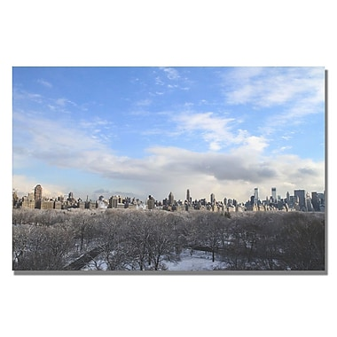 Trademark Fine Art Ariane Moshayedi 'City From A Far' Canvas Art 22x32 Inches