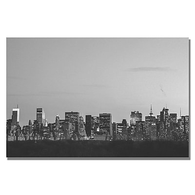 Trademark Fine Art Ariane Moshayedi 'City V' Canvas Art 35x47 Inches