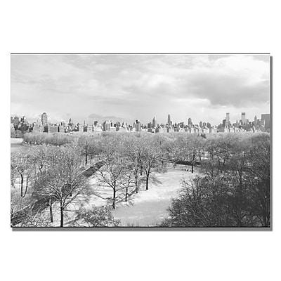 Trademark Fine Art Ariane Moshayedi 'Snowy Park IV' Canvas Art 16x24 Inches