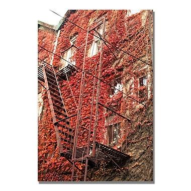 Trademark Fine Art Ariane Moshayedi 'Fire Escape' Canvas Art 16x24 Inches