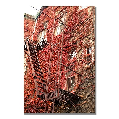 Trademark Fine Art Ariane Moshayedi 'Fire Escape' Canvas Art 16x24 Inches