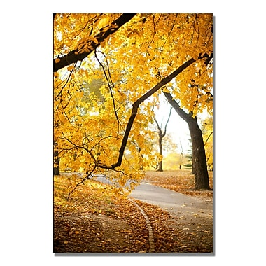 Trademark Fine Art Ariane Moshayedi 'Walk Through the Park' Canvas Art 22x32 Inches