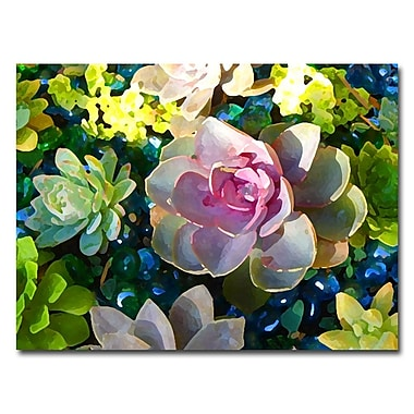 Trademark Fine Art Amy Vangsvard 'Pond' Canvas Art