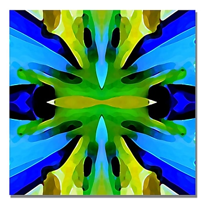 Trademark Fine Art Amy Vangsgard 'Paradise BLue and Green' Canvas Art 24x24 Inches