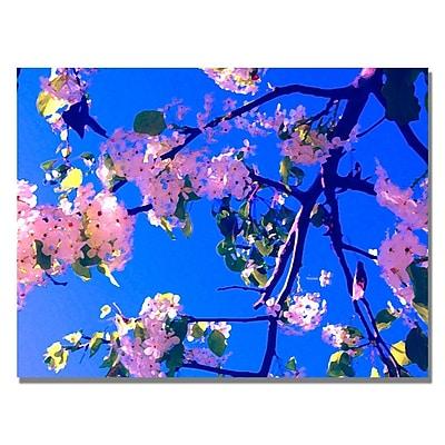 Trademark Fine Art Amy Vangsgard ' Pink Flowering' Canvas Art