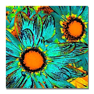 Trademark Fine Art Amy Vangsgard 'Pop Daisies' Canvas 24x24 Inches