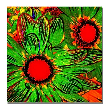 Trademark Fine Art Amy Vangsgard 'Pop Daisies III' Canvas 35x35 Inches