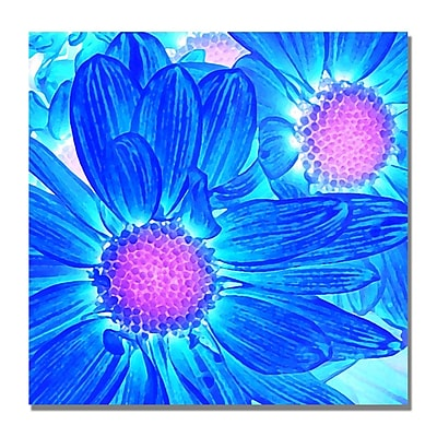 Trademark Fine Art Amy Vangsgard 'Pop Daisies VI' Canvas 18x18 Inches