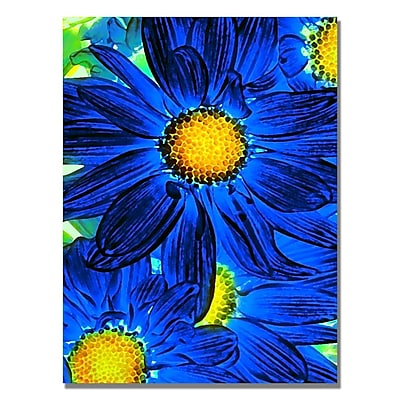 Trademark Fine Art Amy Vangsgard 'Pop Daisies XI' Canvas 18x24 Inches, AV0082-C1824GG