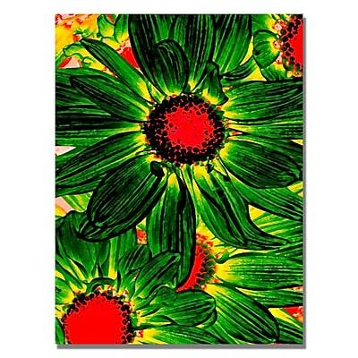Trademark Fine Art Amy Vangsgard 'Pop Daisies XII' Canvas 24x32 Inches