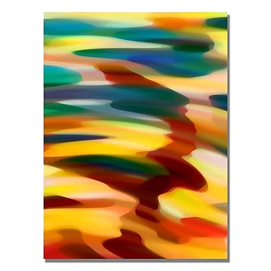 Trademark Fine Art Amy Vangsgard 'Color Fury' Canvas Art 18x24 Inches