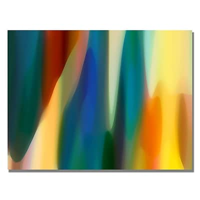 Trademark Fine Art Amy Vangsgard 'Color Fury IV' Canvas Art 35x47 Inches