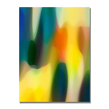 Trademark Fine Art Amy Vangsgard 'Color Fury V' Canvas Art 22x32 Inches