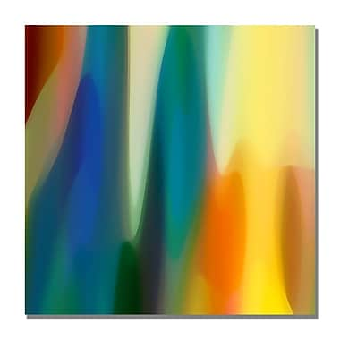 Trademark Fine Art Amy Vangsgard 'Color Fury VI' Canvas Art 18x18 Inches