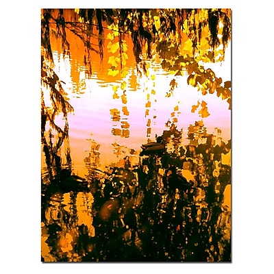 Trademark Fine Art Ducks in Morning Light-Canvas Art Ready to Hang