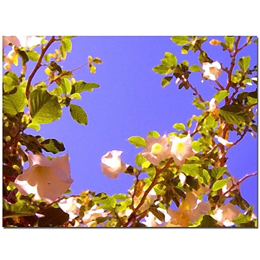 Trademark Fine Art Flowering Tree II-Canvas Art Ready to Hang