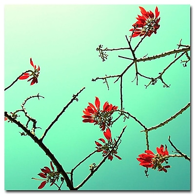Trademark Fine Art Beata Czyzowska Young 'A Touch of Red' Canvas Art