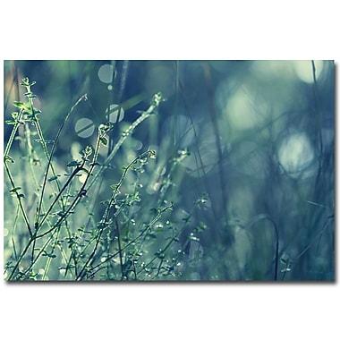 Trademark Fine Art Beata Czyzowska Young 'Blues in the Morning' Canvas Art