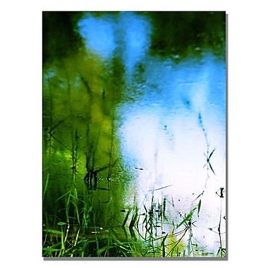 Trademark Fine Art Beata Czyzowska 'Painted by Nature' Canvas Art