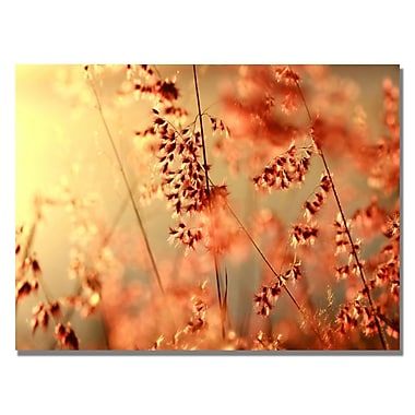 Trademark Fine Art Beata Czyzowska 'Sunset Conversations' Canvas Art 22x32 Inches