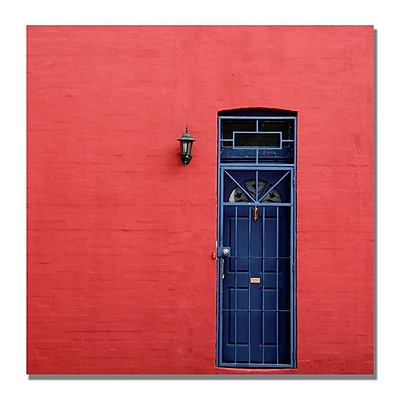 Trademark Fine Art Beata Czyzowska 'The Door' Canvas Art
