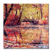 Trademark Fine Art Beata Czyzowska 'Monets Garden' Canvas Art