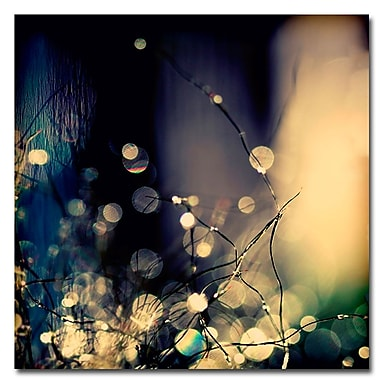 Trademark Fine Art Beata Czyzowska 'Fairies at Nighttime' Canvas Art 35x35 Inches