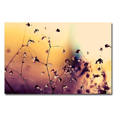 Trademark Fine Art Beata Czyzowska Young 'When They're Happy' Canvas Art 30x47 Inches
