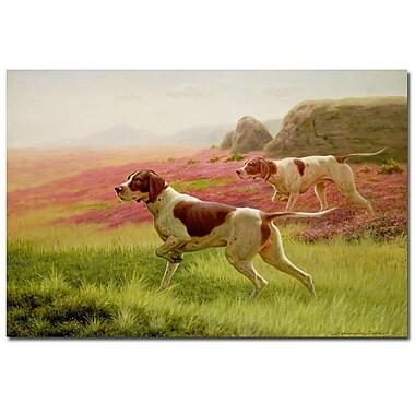 Trademark Fine Art Harrington Bird 'Pointers in the Landscape' Canvas Art
