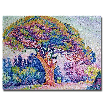 Trademark Fine Art Paul Signac 'The Pine Tree at St.Tropez 1909' Canvas Art 18x24 Inches