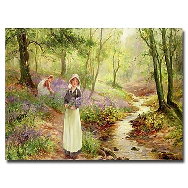 Trademark Fine Art Ernest Walbourn 'The Bluebell Glade' Canvas Art