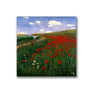 Trademark Fine Art Pal Szinyei Merse'The Poppy Field' Canvas Art