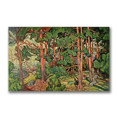 Trademark Fine Art Carl Edvard Diriks 'Fauve Landscape' Canvas Art 14x32 Inches