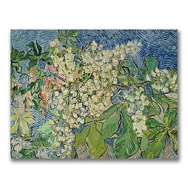 Trademark Fine Art Vincent Van Gogh 'Blossoming Chesnut Branches' Canvas Art