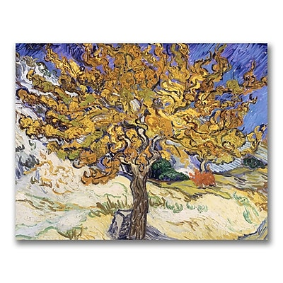 Trademark Fine Art Vincent Van Gogh 'Mulberry Tree 1889' Canvas Art