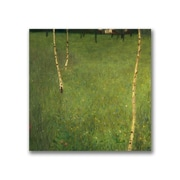 Trademark Fine Art Gustav Klimt 'Farmhouse with Birch Trees' Canvas Art