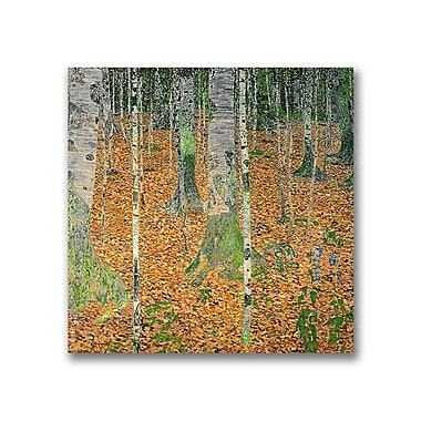 Trademark Fine Art Gustav Klimt 'The Birch Wood' Canvas Art