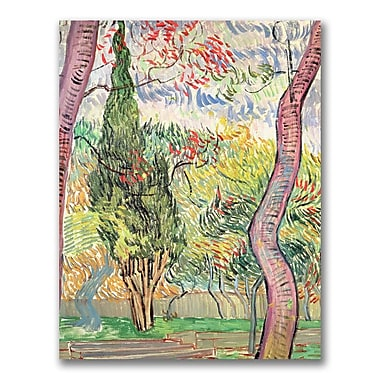 Trademark Fine Art Vincent Van Gogh'The Garden of St. Pauls Hospital'Canvas Art