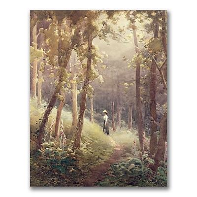 Trademark Fine Art John Faraquharson 'A Woodland Glade' Canvas Art