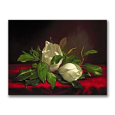 Trademark Fine Art Martin Heade 'Magnolia' Canvas Art