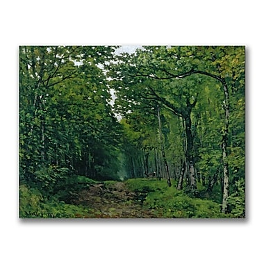 Trademark Fine Art Alfred Sisley 'The Avenue of Chestnut Trees' Canvas Art