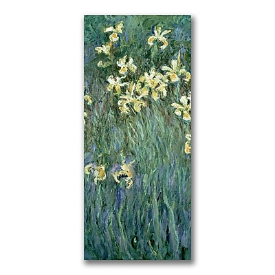 Trademark Fine Art Claude Monet 'The Yellow Irises' Canvas Art 20x47 Inches