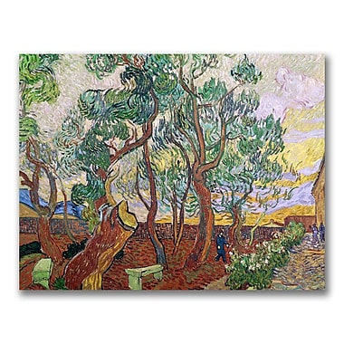 Trademark Fine Art Vincent Van Gogh 'The Garden of St. Paul' Canvas Art
