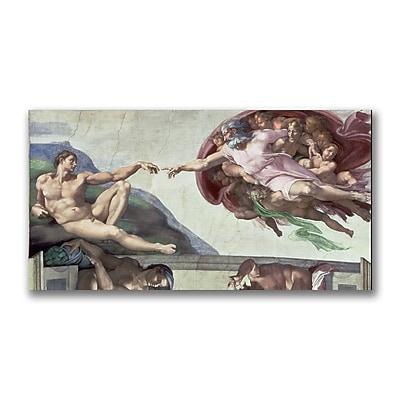 Trademark Fine Art Michelangelo 'Sistine Chapel Ceiling' Canvas Art 12x24 Inches