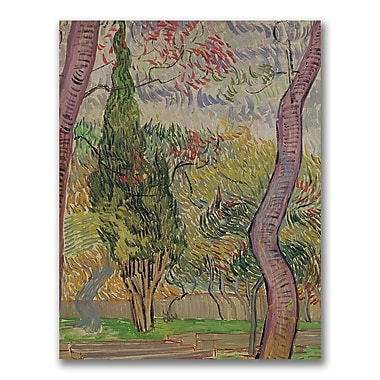 Trademark Fine Art Vincent Van Gogh 'The Park at Saint-Paul' Canvas Art